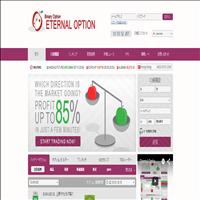 ETERNAL OPTION(エターナルオプション)